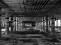 Exploring The Ruins of Detroit's Packard Auto Plant