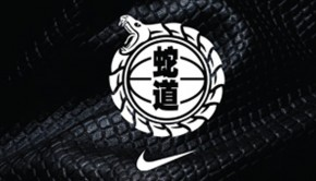 Nike 2013 Year of the Snake