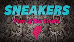 sneakers Year of the snake freshspace