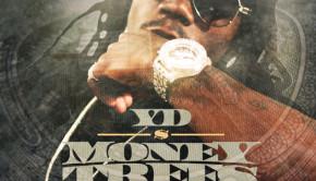 YD-Money-Trees