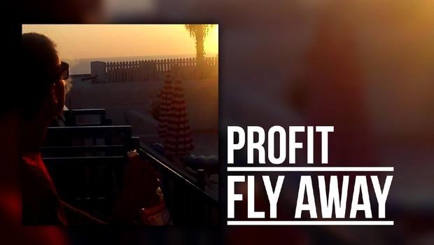 profit uvodka