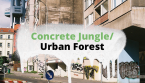 graffiti_profil_concretejungleurbanforest