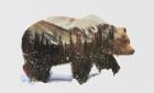 Andreas Lie představuje domov různých zvířat