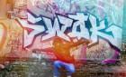 SWOK R.I.P.